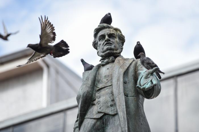 https://wisdom.yoga/wp-content/uploads/2016/12/Pigeons-on-statue.jpg
